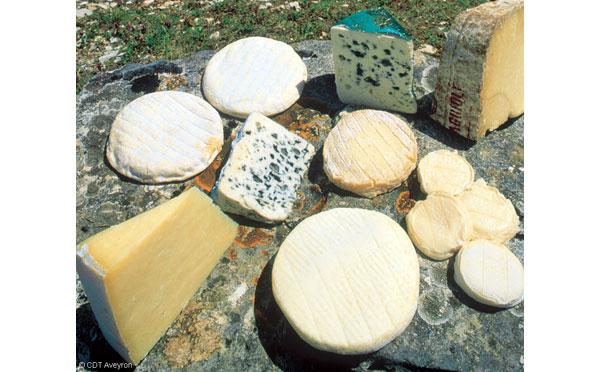 Plateau de fromages de l'Aveyron