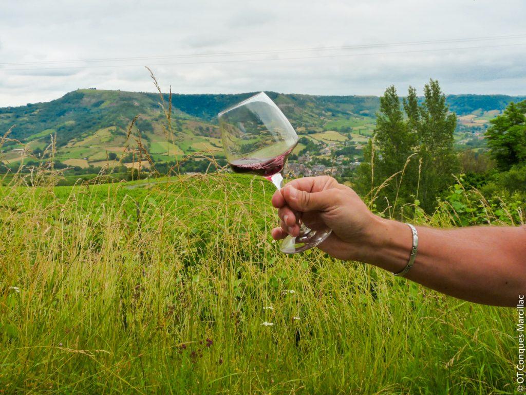 Dégustation de vin de Marcillac, Aveyron