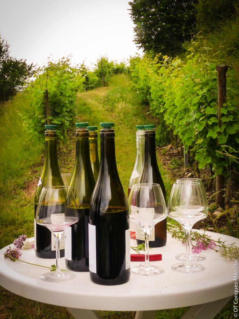 Dégustation de vin de Marcillac au Domaine du Cros, Aveyron