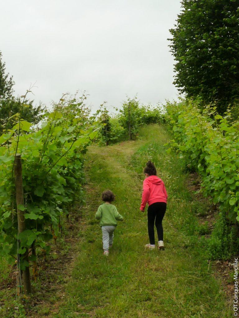 Enfants dans les vignes du Domaine du Cros, Marcillac, Aveyron