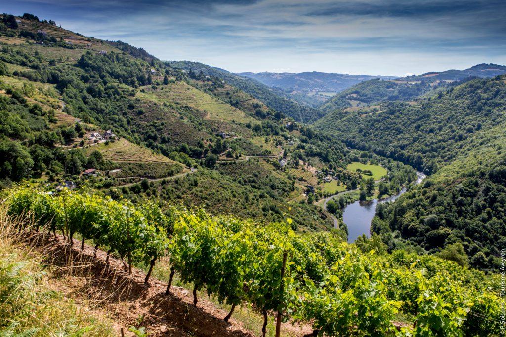 Coteaux du Fel, vallée du Lot, Aveyron © P. Soissons - Tourisme Aveyron