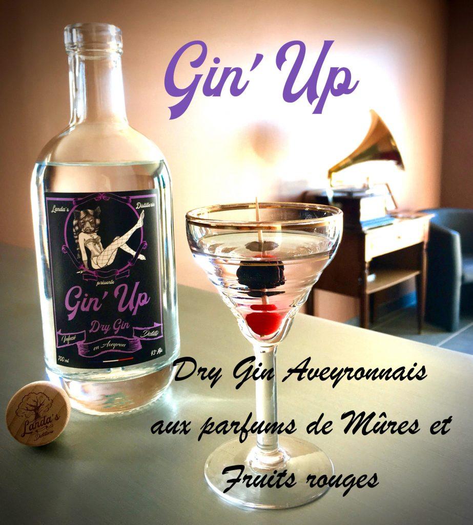 Gin'Up de Landa's Distillerie en Aveyron